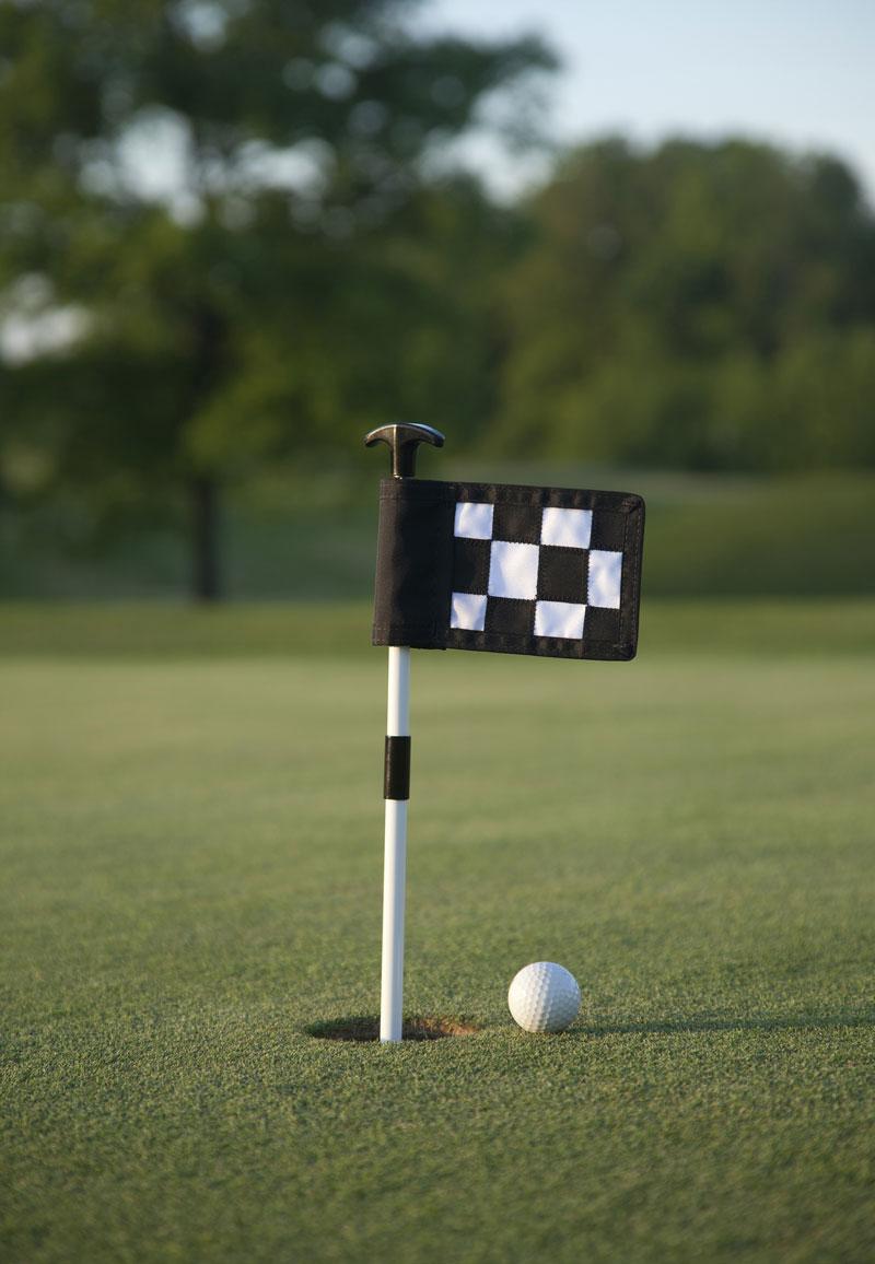 Mini Putting Green Flags
