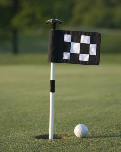 Mini Golf Hole Flags